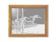 Lake Mallards - Etched Mirror